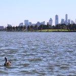 Melbourne. Showing off as usual. #Autumn #visitmelbourne #ilovemelbourne #melbourne #visitvictoria https://t.co/6m0rjVJJh8