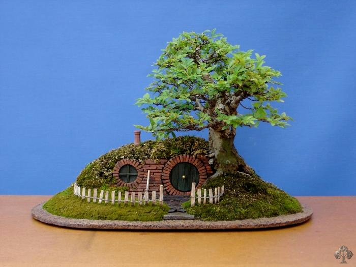 Bag End #Bonsai #Trayscape | https://t.co/yJ4UiVcRHj via @bonsaiempire #TheHobbit #LOTR #fb https://t.co/thoR2OAEkl