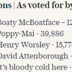 RRS Boaty McBoatface was 1125% more popular than RRS David Attenborough https://t.co/X1A50zLgs8 https://t.co/ekVhfZCbhM