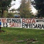Buenos dias!! Al parecer no es un problema simple de MAREA ROJA en Chiloe, via @_RebeldeIronia @Toto_gonzalez_ https://t.co/q3XYZZkPny