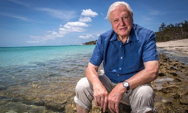 Happy Birthday Sir David Attenborough! As he turns 90, we look back at his best work https://t.co/g9zdfsXElT https://t.co/pLbWNO4yGp