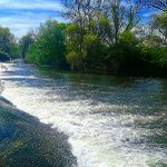 VIDA PARA LA TIERRA (El Tormes a la altura de Puente Gudino, Doñinos) https://t.co/0ynDiPktV6 #Salamanca https://t.co/zHan8fXKVC