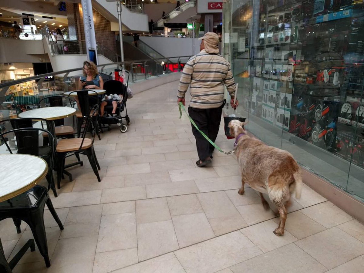Yes, a goat. In the mall. In Tel Aviv. https://t.co/B6wgu3pnnc https://t.co/CMHiLDGhRZ
