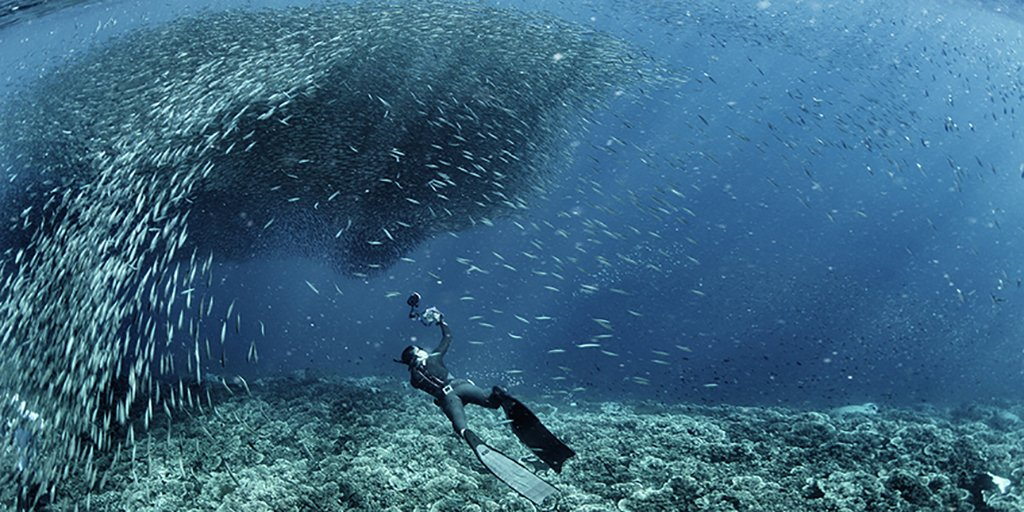 Freediving in the Philippines, anyone?