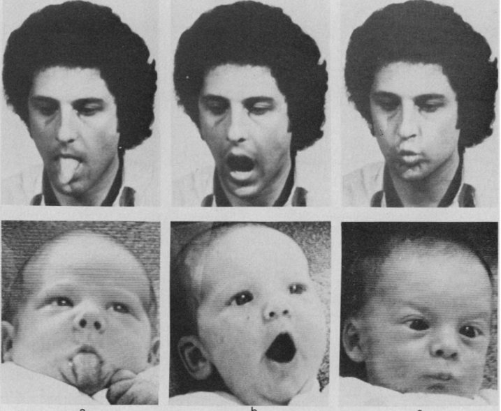 Classic finding about newborn babies' imitation skills is probably wrong  https://t.co/KvR91AD2aT https://t.co/zEp3HqGn6E Me @ResearchDigest
