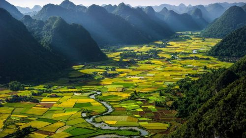 RT @YVRdeals: YVR Deals Alert: Vancouver to Ho Chi Minh or Hanoi, Vietnam - $584 CAD roundtrip incl taxes https://t…