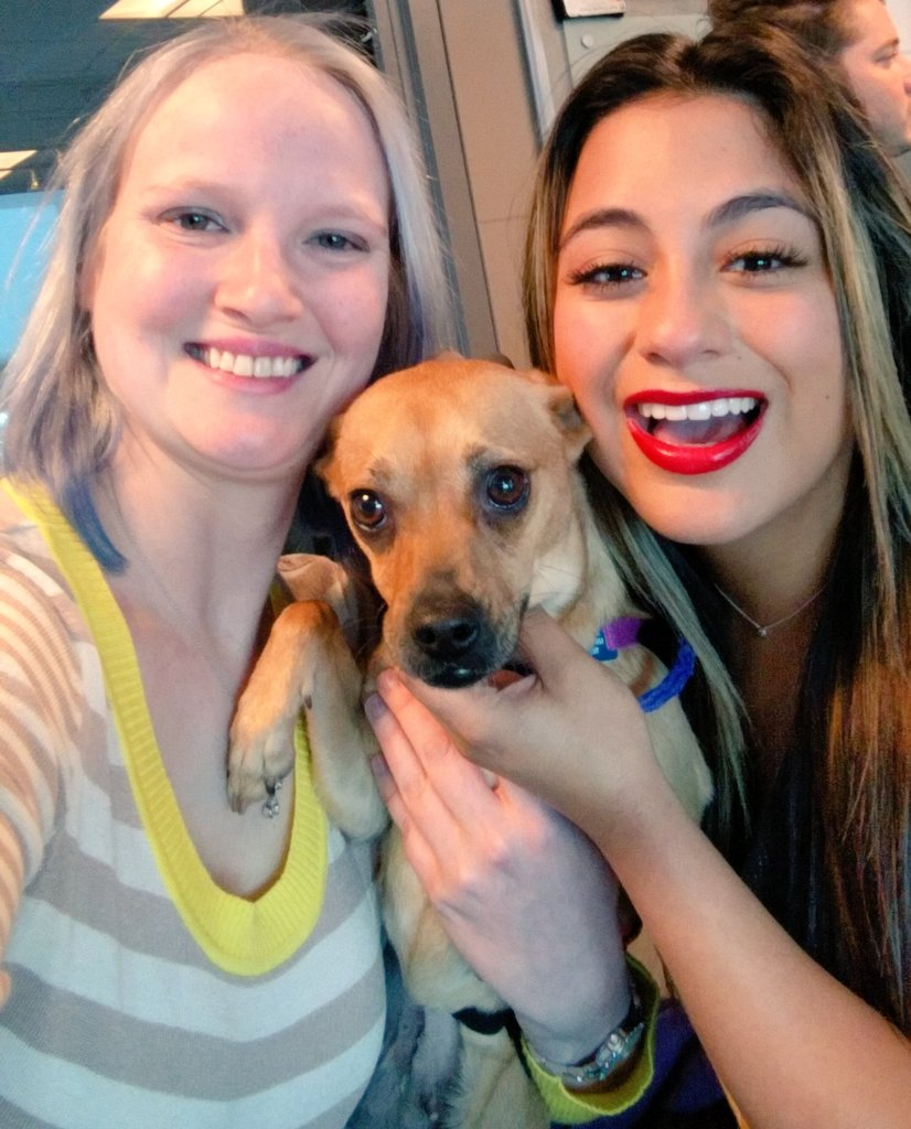 Excited fellow pup lover @AllyBrooke & @FifthHarmony are back in #Philly Aug 7! #727Tour https://t.co/VFCmaWg7vc https://t.co/93EimcD0HY