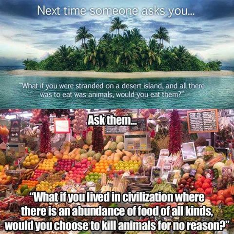 If I were stranded on an island, I'd eat anything 2 stay alive. But, I'm a mile from a grocery store. So I'm vegan https://t.co/92cnNhTgP8