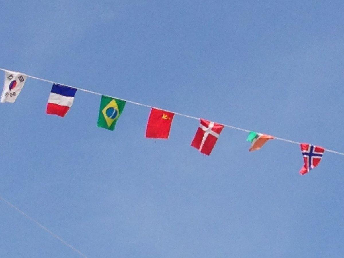 小学校の運動会来てるけど、ブラジルの旗の隣に。  #ソ連はある https://t.co/D8NsId07RX