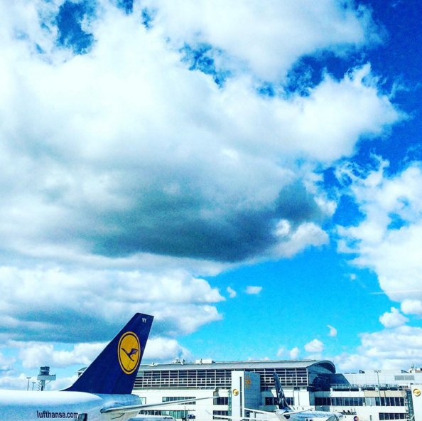 Blue skies and blue tails - two things we could never get tired of! Photo: