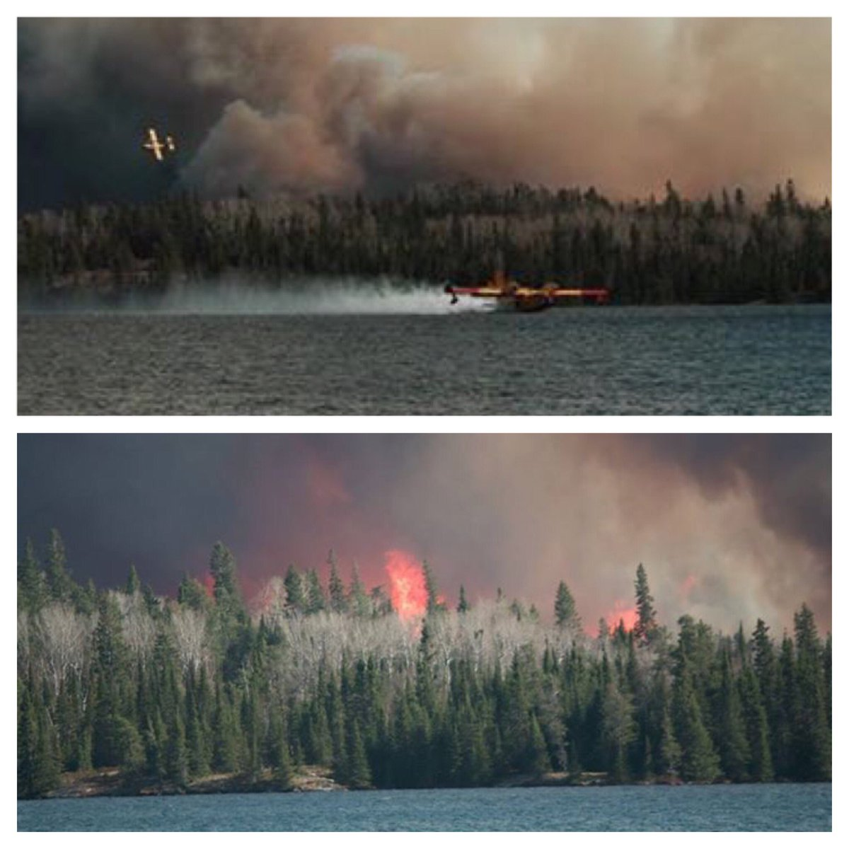 Recent images of forest fire east of Caddy Lake. 1K hectare fire is spreading & forces evac. of 50 cottages. #CTV https://t.co/w6gRyGVnhl