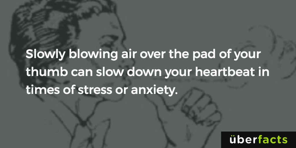 A quick way to reduce stress. https://t.co/0toYWzekLm