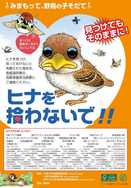 今日、10日から16日まで「愛鳥週間」です!#バードウィーク (ファミコンソフトのことじゃないですよ)とも呼ばれる、野鳥から自然のことを知ってもらおうという週です。そろそろ鳥のヒナが道に落ちてたりしますが、拾ったりするのはやめてね! https://t.co/2ks9ajkIub