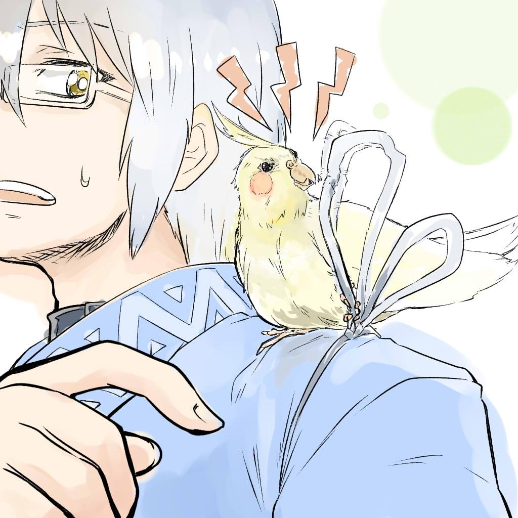 今日から愛鳥週間! https://t.co/82fgQImCGI