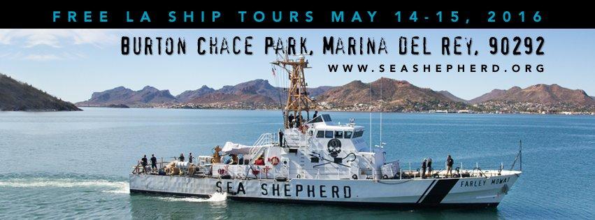 RT @SeaShepherdSSCS: We're coming to LA! Meet us this weekend for ship tours in @MarinaDelRey_CA! #SeaShepherd https://t.co/cQ9Eqs5X3O http…