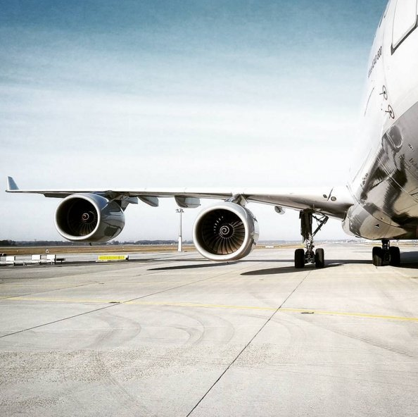 Have wings, will travel. Photo: