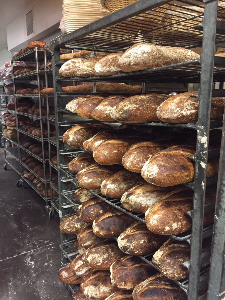 Want to be part of a sustainable, whole grain bakery? Want to learn a craft from the best? Greg@publicanqualitybread https://t.co/VXr099cije