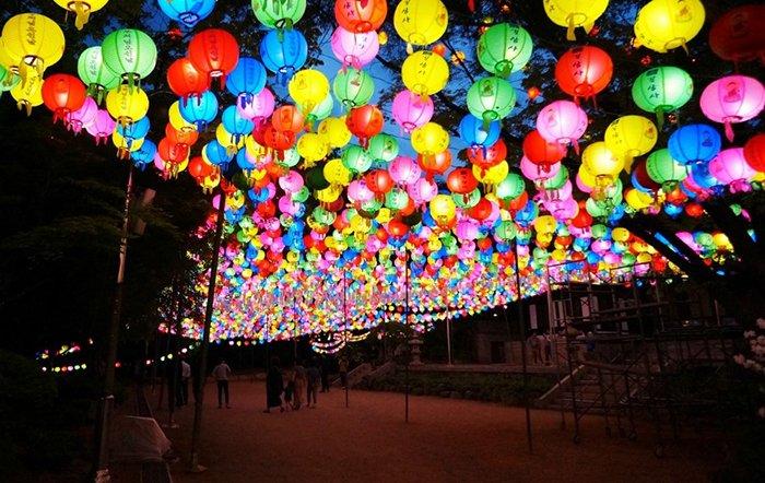 도심 속부터 자연 속까지! 부처님오신날 연등축제보다 더 아름다운 우리나라 5대 사찰여행 떠나보기! > https://t.co/RBlxC54Zs1 #한화 https://t.co/YTUCK4541M