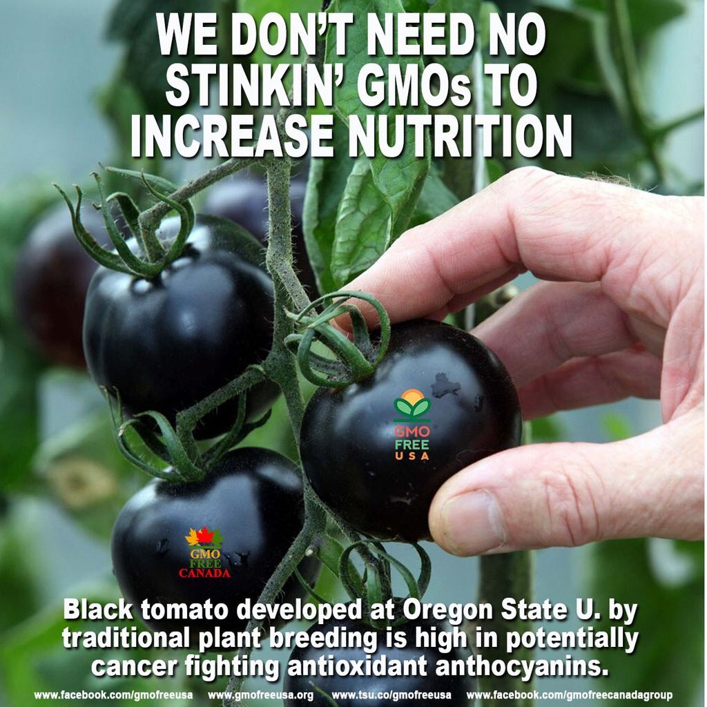 We don't need no stink' GMOs... @GMOFreeUSA #NOdarkAct #LabelGMOs https://t.co/IivOnyFpCE