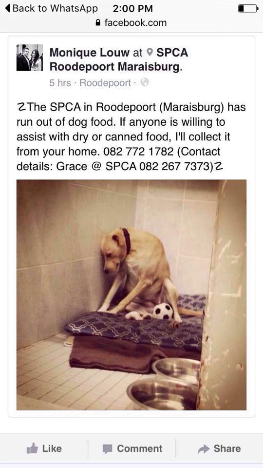 Please help.. RT  @Abramjee @Radio702 @702JohnRobbie https://t.co/NpJtNj1vcq