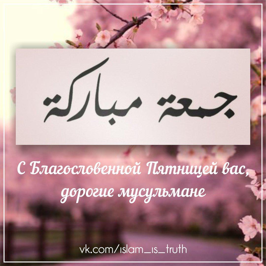 Фетва в отношении поздравления по пятницам - Fatwa Online 99