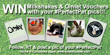 #WIN @omlet and @shakenudder treats. Follow, RT and post a pic of your #PerfectPet https://t.co/MiSIMu5qQL