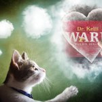MT @TeamWardPima: My CatThinks Dr #KelliWardAz will #RetireMcCain https://t.co/b8MgFeIKwW #PJNET