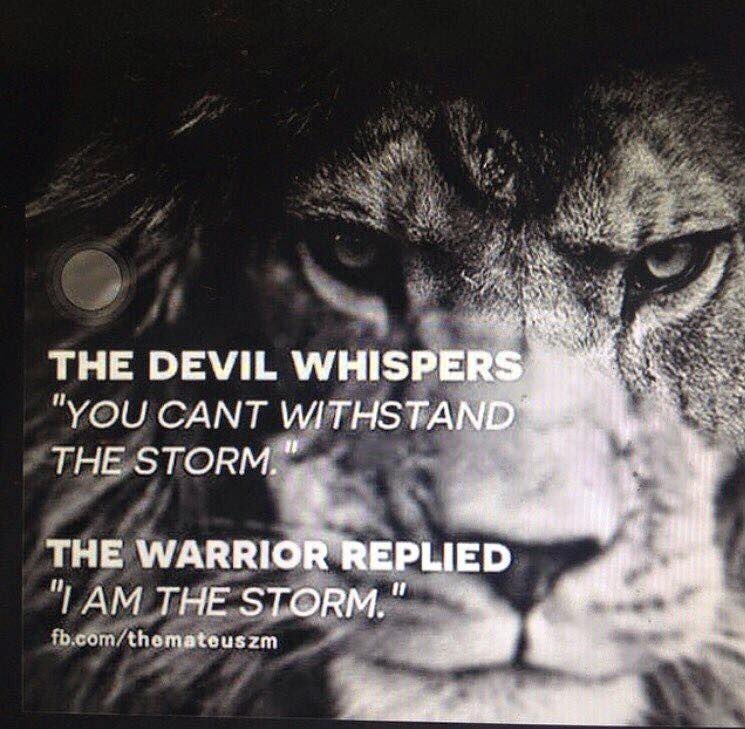 Motivation for you today! Be the warrior!!! #mondaymotivation #MotivationMonday https://t.co/lX2QIQCMQ5