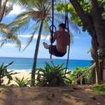 """""""How you been?"""" Oh you know.. Hangin in there 🌴 🐒 #MondayMotivation https://t.co/aKWnBJqPRU"""
