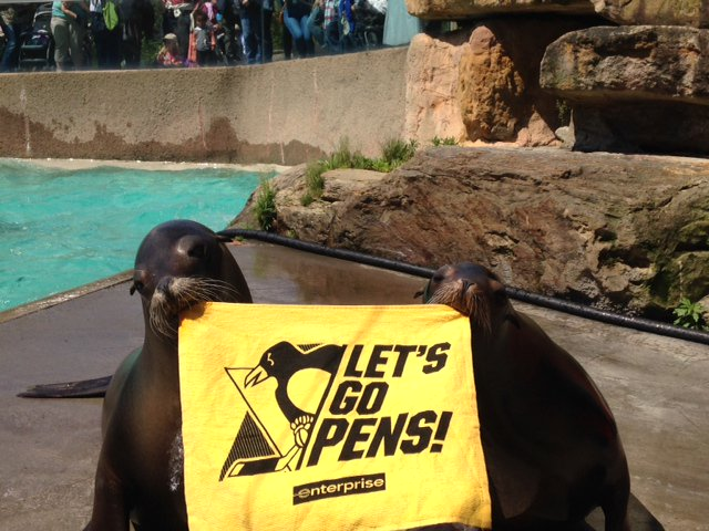 "@penguins @LowryParkZoo @PghZoo We would be ""lion"" if we said sea lions Maggie & Zoey aren't big #Pens fans. https://t.co/vpAzpNXzgF"