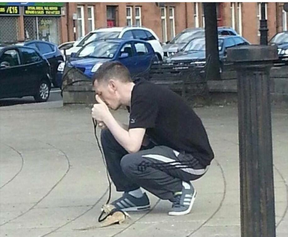 Meanwhile in Glasgow, a man stopping to light a joint while taking his lizard for a walk... https://t.co/7lj4YAvAV5