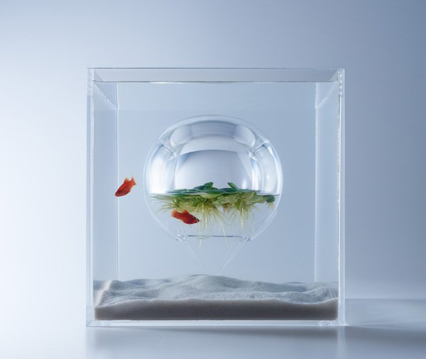 Japanese Designer Haruka Misawa Made The Most Intriguing Fish Tanks. https://t.co/IH0YzXk6dP https://t.co/GdDxjGPqWh