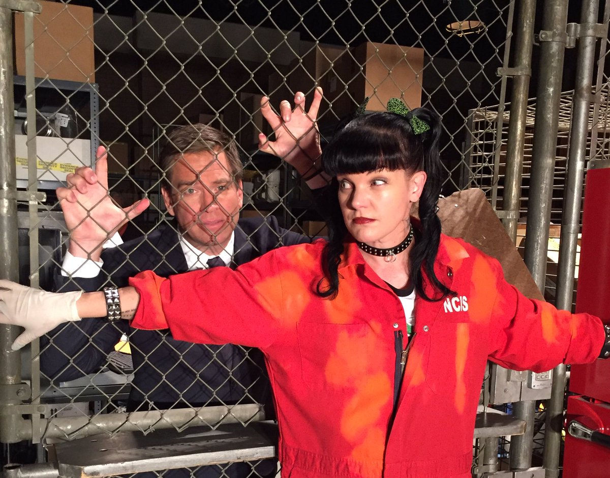 I tried to lock @M_Weatherly in my #NCIS evidence garage: https://t.co/m3P9lMoA66