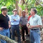Junto a Bertho Zambrano, Gerente de Corp. Fortaleza del Valle, recorremos las plantaciones de cacao. #Calceta https://t.co/IHheCJsJbc