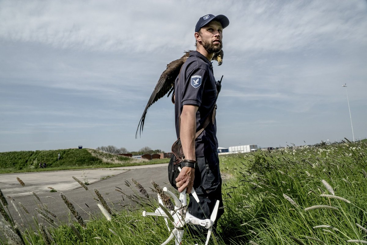 Handler from a Dutch company that trains eagles to take down drones (Andrew Testa): https://t.co/qTXrNHmYCd https://t.co/gRYgUtkCDM