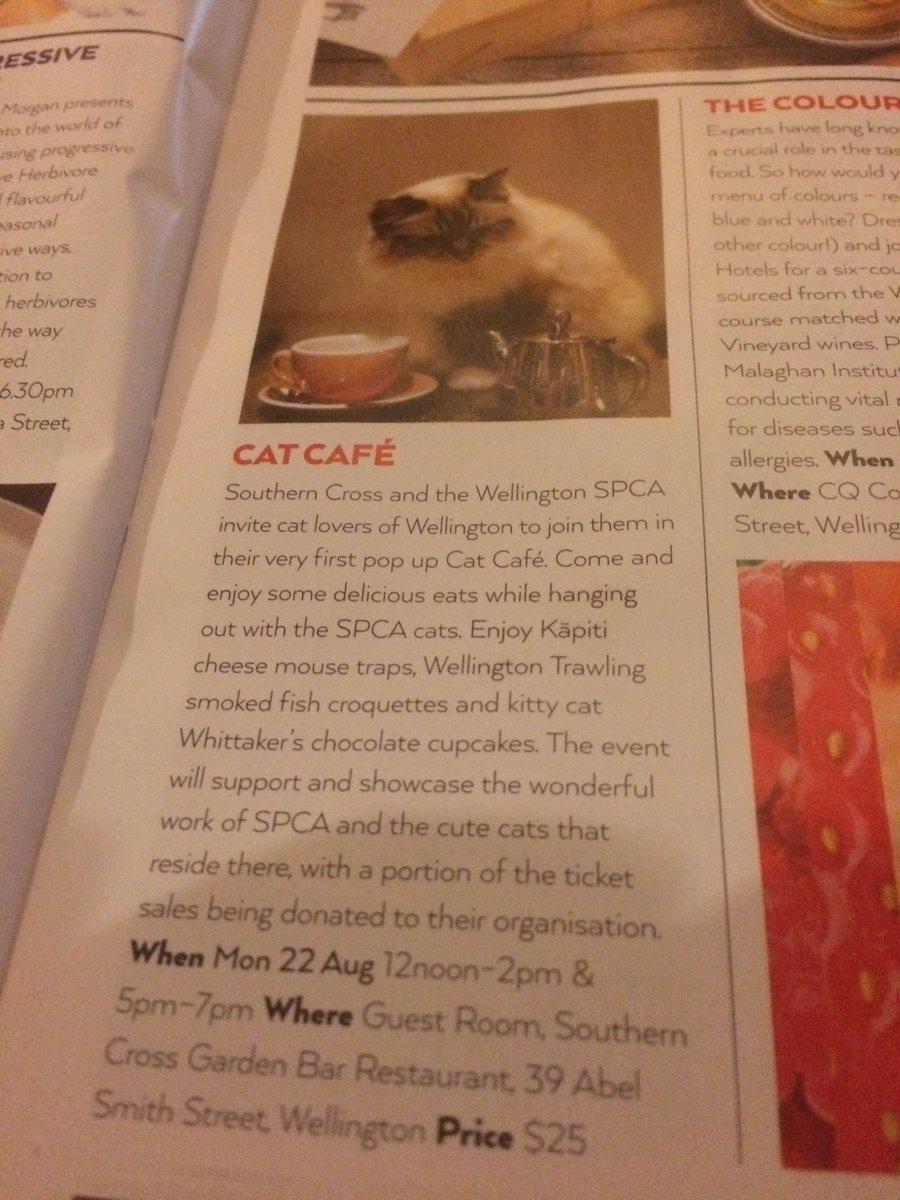 EEEEEEEEEEEEEEEEEE! @SPCAWgtn is doing a POP UP CAT CAFE at the So Cro for #wellyonaplate