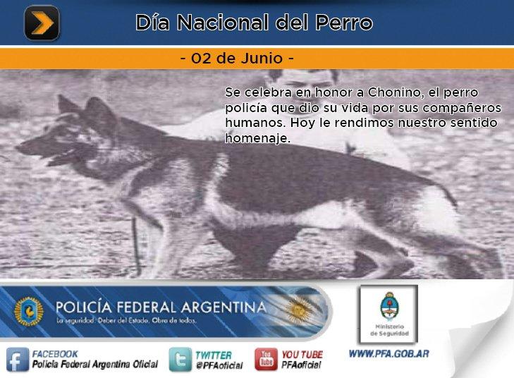 Día Nacional del Perro. https://t.co/eOsImNPyiu