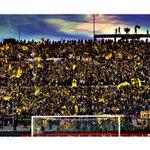 Qué vas a saber lo que es la felicidad si no sos hincha de Peñarol?⚫💛⚫ https://t.co/UX3usbbYN9