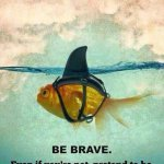 RT @QuoteILoveU: Be Brave. Even If You're Not, Pretend To Be.#Quotes https://t.co/wi8KuhsCER