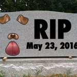 A moment of silence for all the females out there who lost a loved one today. RIP Snapchat Dog Filter. https://t.co/cGDPDe4sOa