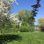 Victoria Day: when #Ottawa transforms into Monet paintings. Gorgeous city. https://t.co/hfYr30oDUl