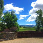 The world outside our door... via @KenwoodInn & Spa in Sonoma County, CA #SonomaChat #Wine #Winelover https://t.co/CiXLVylUbV