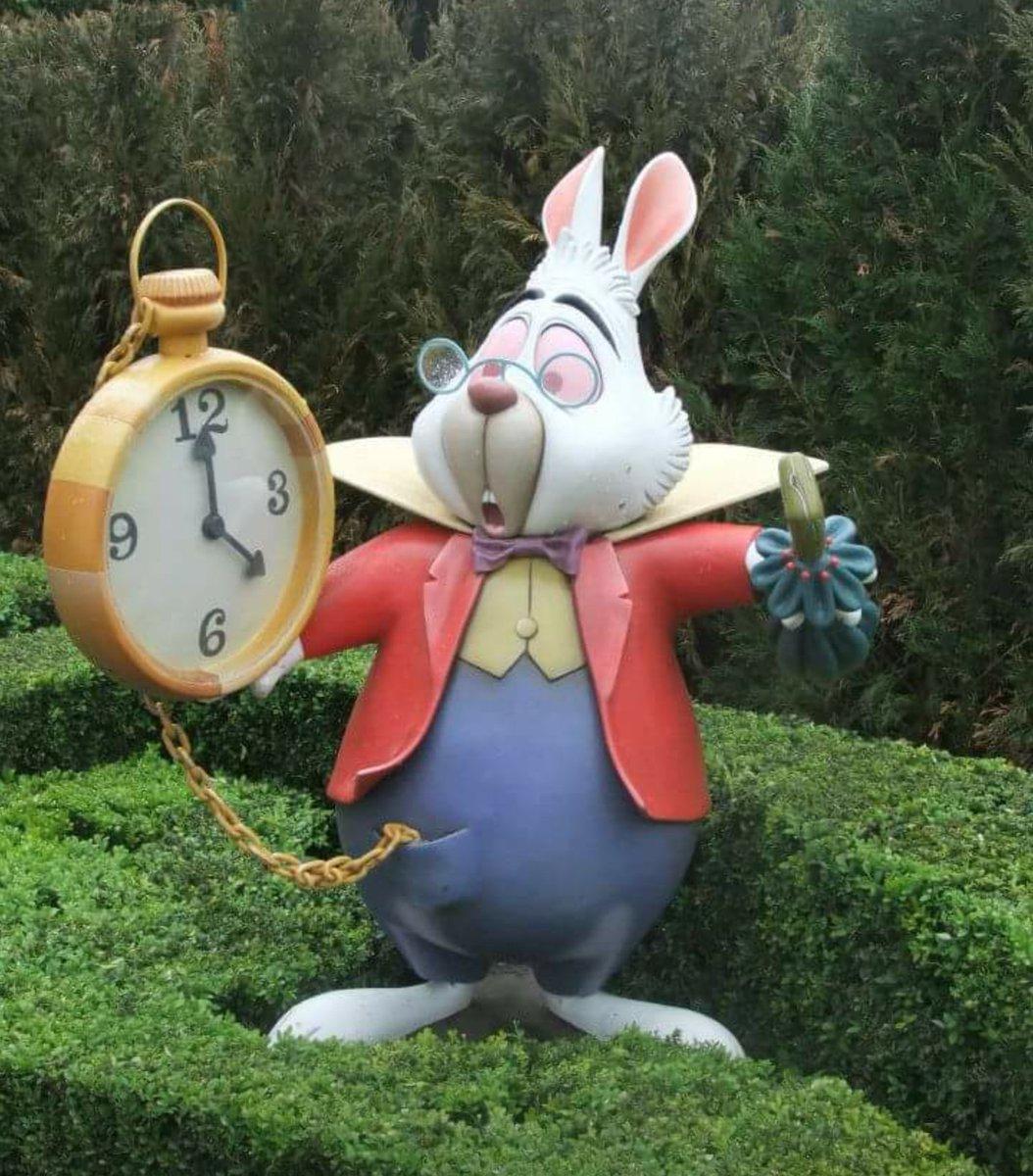 DisneylandParis, primark, thelionking, disney, disneylandparis, disnerd, whiterabbit, aliceinwonderland, disneylandparis, disnerd