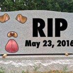 Snapchat a retiré le filtre snap de chienne, les meufs ne pourront plus lutiliser pour cacher leur vilain nez. .. https://t.co/vCH0QpFwkC