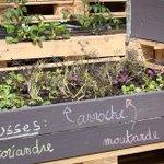A #Nantes, la Cantine du Voyage ouvre un potager bio pour nourrir 500 personnes par jour https://t.co/PifJayFQ21 https://t.co/lWApwXgAk0