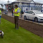@bournemouthuni and @EB_Heritage using GPR to locate Eastbourne Roman villa with @pcheetham54 https://t.co/xgpgtcwsag