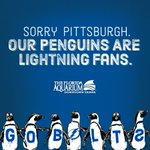 Sorry, @penguins, our birds have spoken. Lets end this series tonight, @TBLightning!  #GoBolts #PITvsTBL https://t.co/RlKsklYeoZ
