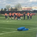 All 3 QBs taking reps today - Sanchez, Siemian, and Lynch all in the rotation. #Broncos #OTAs https://t.co/UVzO5Dk5JV