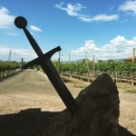 @CamelotVineyard #fabfive #getwicked #excalibur https://t.co/MzpTG6EhdA