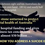 When it comes to mental health @TurnbullMalcolm cant be trusted. #auspol #ausvotes https://t.co/0metPbTqcn https://t.co/GZOsqBch99